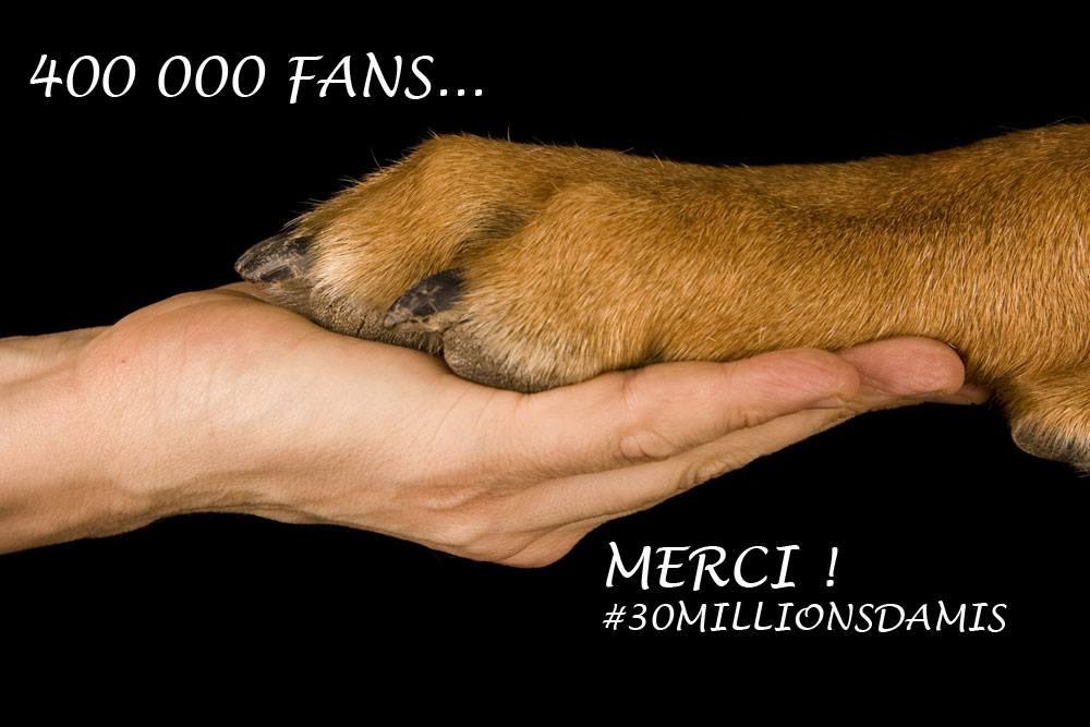 30 Millions Amis 400 000 fans