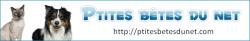 ptites-betes-du-net-logo-2.png